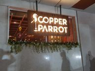 Store Images 9 of Copper Parrot